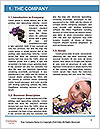 0000087689 Word Template - Page 3