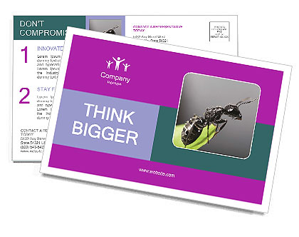 0000087692 Postcard Template
