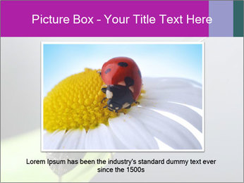 Ant PowerPoint Template - Slide 15