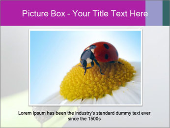 Ant PowerPoint Template - Slide 16