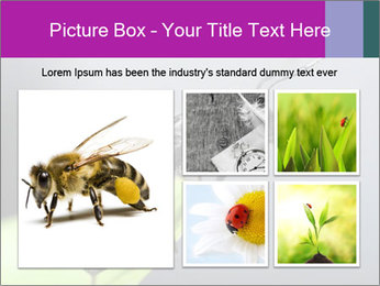 Ant PowerPoint Template - Slide 19