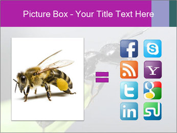 Ant PowerPoint Template - Slide 21