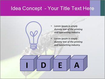 Ant PowerPoint Template - Slide 80