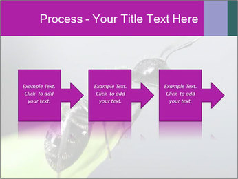 Ant PowerPoint Template - Slide 88