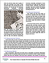 0000087692 Word Template - Page 4