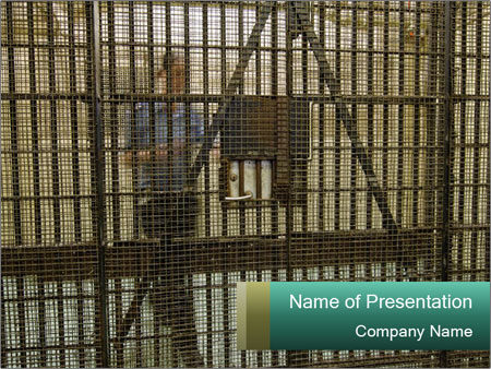 Prison PowerPoint Template