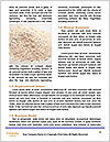 0000087702 Word Template - Page 4