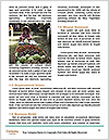 0000087706 Word Templates - Page 4