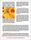 0000087710 Word Templates - Page 4