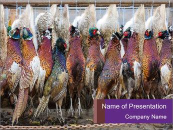 Pheasants PowerPoint Templates - Slide 1