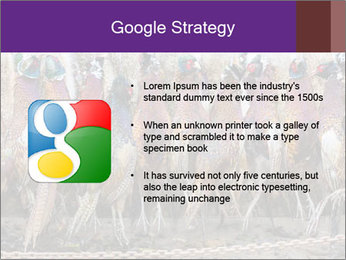 Pheasants PowerPoint Templates - Slide 10