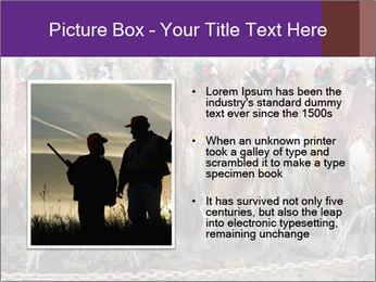 Pheasants PowerPoint Templates - Slide 13