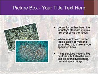 Pheasants PowerPoint Templates - Slide 20