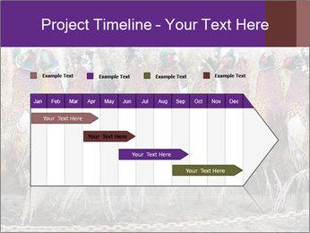 Pheasants PowerPoint Templates - Slide 25