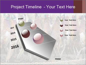 Pheasants PowerPoint Templates - Slide 26