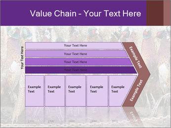 Pheasants PowerPoint Templates - Slide 27