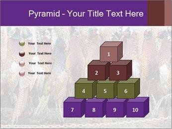 Pheasants PowerPoint Templates - Slide 31