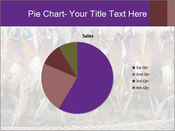 Pheasants PowerPoint Templates - Slide 36