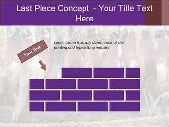 Pheasants PowerPoint Templates - Slide 46