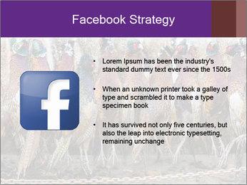Pheasants PowerPoint Templates - Slide 6