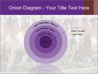 Pheasants PowerPoint Templates - Slide 61
