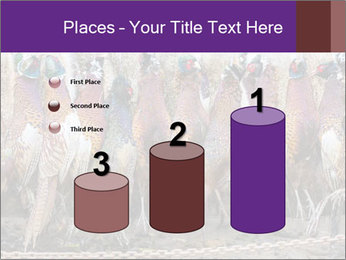Pheasants PowerPoint Templates - Slide 65