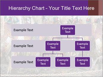 Pheasants PowerPoint Templates - Slide 67