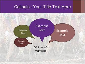 Pheasants PowerPoint Templates - Slide 73