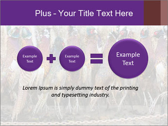 Pheasants PowerPoint Templates - Slide 75
