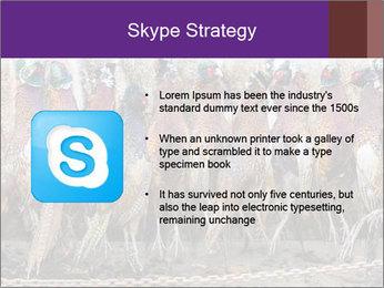 Pheasants PowerPoint Templates - Slide 8