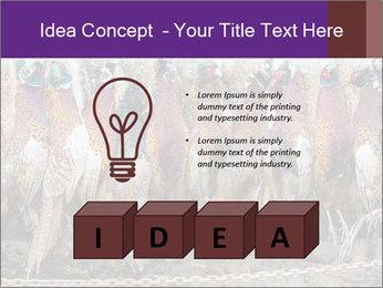 Pheasants PowerPoint Templates - Slide 80