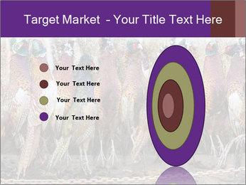 Pheasants PowerPoint Templates - Slide 84