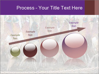 Pheasants PowerPoint Templates - Slide 87