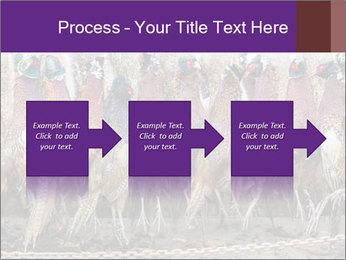 Pheasants PowerPoint Templates - Slide 88