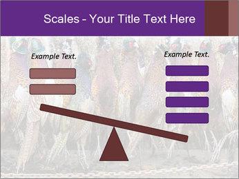 Pheasants PowerPoint Templates - Slide 89