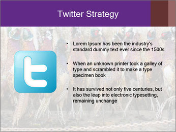 Pheasants PowerPoint Templates - Slide 9