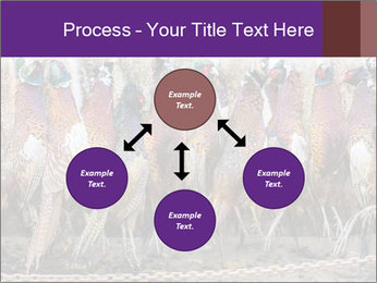 Pheasants PowerPoint Templates - Slide 91