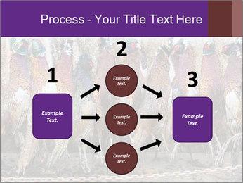 Pheasants PowerPoint Templates - Slide 92
