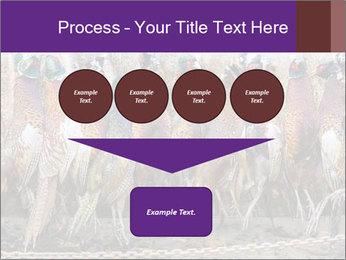 Pheasants PowerPoint Templates - Slide 93