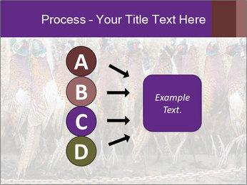 Pheasants PowerPoint Templates - Slide 94