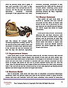 0000087713 Word Template - Page 4