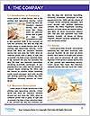 0000087716 Word Template - Page 3
