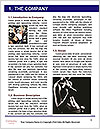 0000087717 Word Template - Page 3