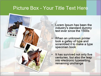 Equestrian Competition PowerPoint Template - Slide 17
