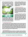 0000087725 Word Template - Page 4