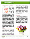 0000087727 Word Templates - Page 3