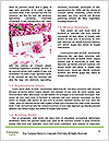 0000087727 Word Templates - Page 4