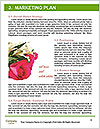 0000087727 Word Templates - Page 8