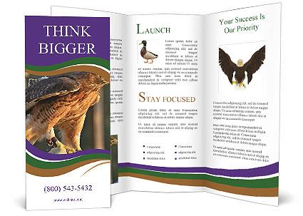 0000087731 Brochure Template