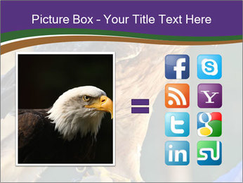 The red-tailed hawk PowerPoint Templates - Slide 21